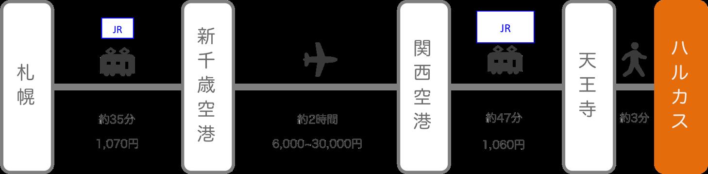 あべのハルカス_北海道_飛行機