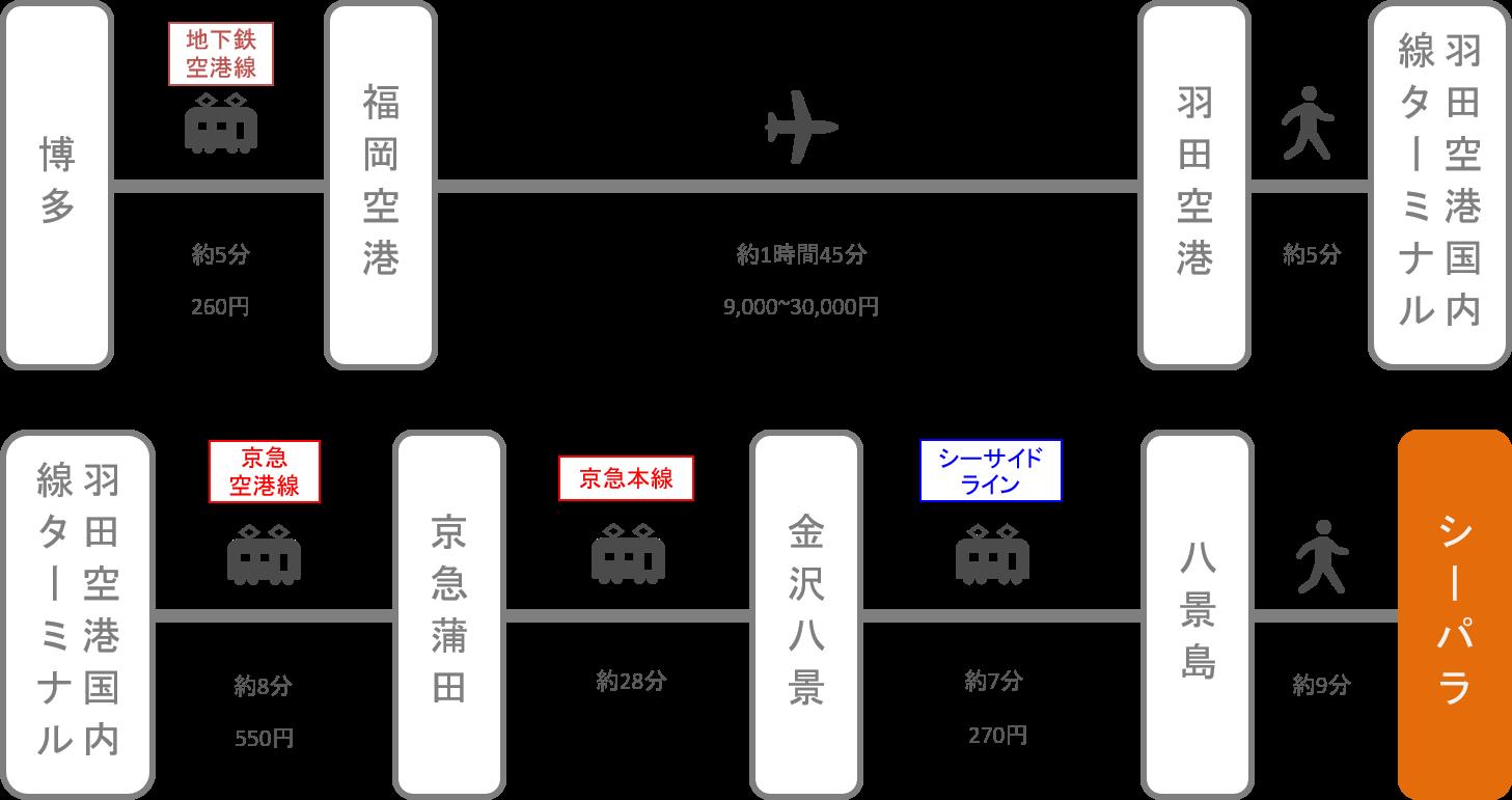 八景島シーパラダイス_博多(福岡)_飛行機