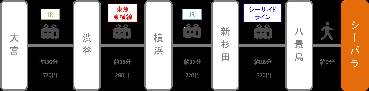 八景島シーパラダイス_大宮(埼玉)_電車